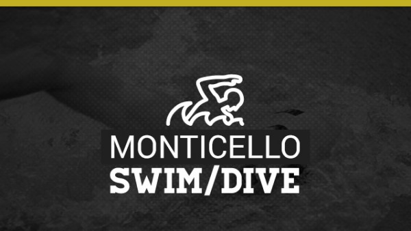 Stock-Swim-Dive
