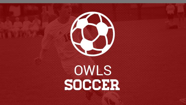 Owls upset Mustangs in 5-AAA soccer semifinals 1-0 (Article Courtesy of The Times Free Press)
