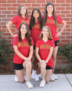 JV cheer Team Picture