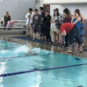 Herald Swim Team in final meet at Maranatha