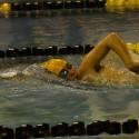 Varsity Swimming at Randolph-Macon College