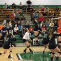 HS volleyball vs Dalton