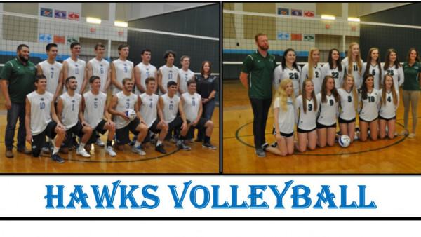 Hawks Volleyball