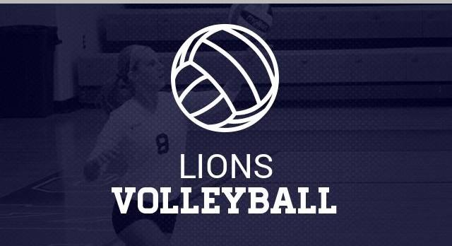 Girls Volleyball Postseason Recap