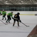 Ice Hockey vs Elyria Catholic