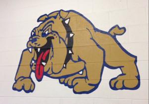 color bulldog