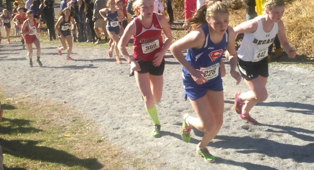 PIAA Cross Country Results
