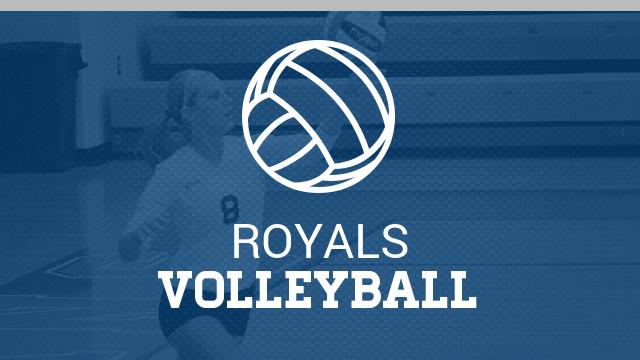 Volleyball Summer Calendar now available
