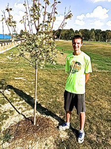 Carothers by 1 of his trees