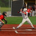 Tosa Wooden Bat tournament