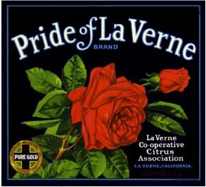 pride-of-la-verne1-300x272 - FRUIT