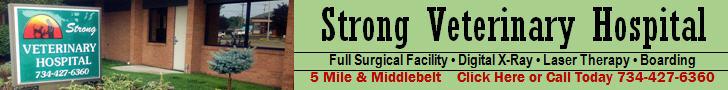 StrongVetHospital728x90