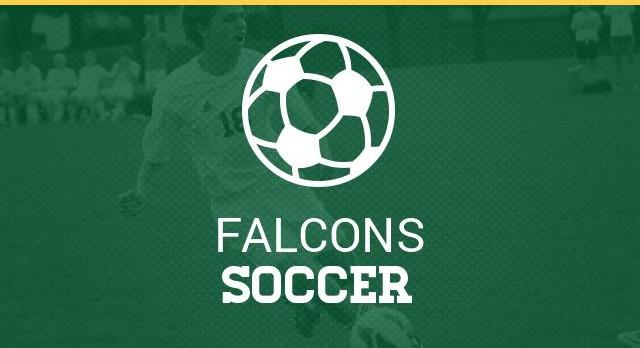 Falcon Boys JV Soccer Team Announced