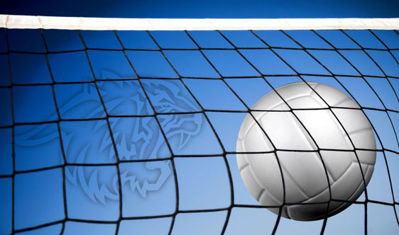 Boys Volleyball to Host Districts