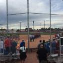 Softball 17-18