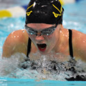FHS Boys/Girls Swimming and  Diving 1/23/17