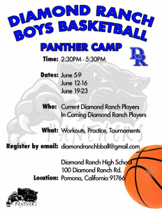 boys basketball summer info