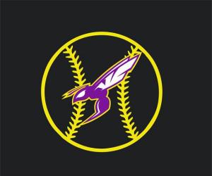 Hornet baseball logo 2017