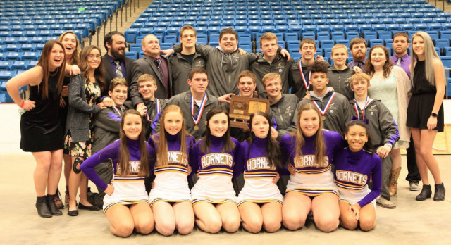 Hornet Wrestling Takes 3rd at State