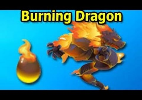 burn dragon burn