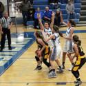 Waynedale Girls Basketball vs. Northwestern 1/5/17