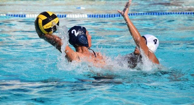 Water Polo wants you!