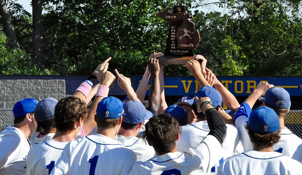 Baseball Dominates Brother Rice to Win Regional Title