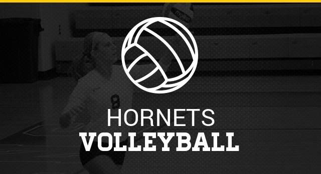 Hornet Volleyball Summer Calendars Posted