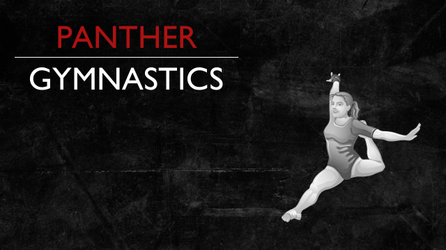 Gymnastics Team Wins Western Invite