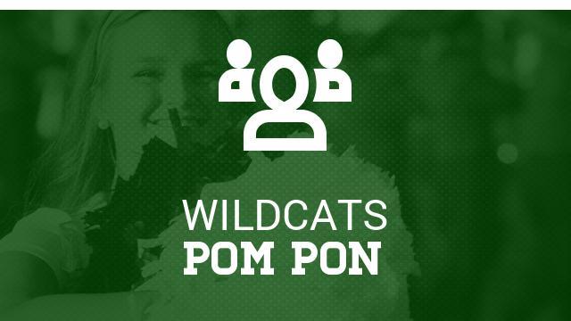 Pom Clinic/Tryout Information