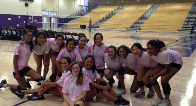 Girls volleyball team & Pink ribbon club raise over $300 for breast cancer research