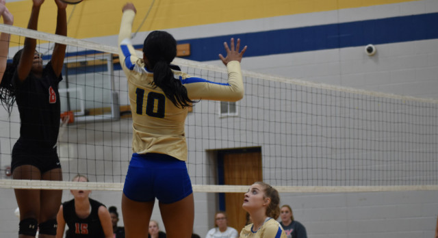 Volleyball—Lady Wildcats  fall to Oakland…Defeat Smyrna