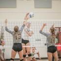 Varsity Volleyball Vs. Hamilton