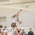 Varsity Volleyball Vs. Shores