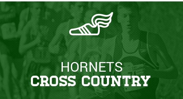 HHS Runners Have Strong Showing at State