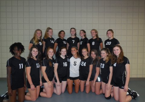 Volleyball Team 2017