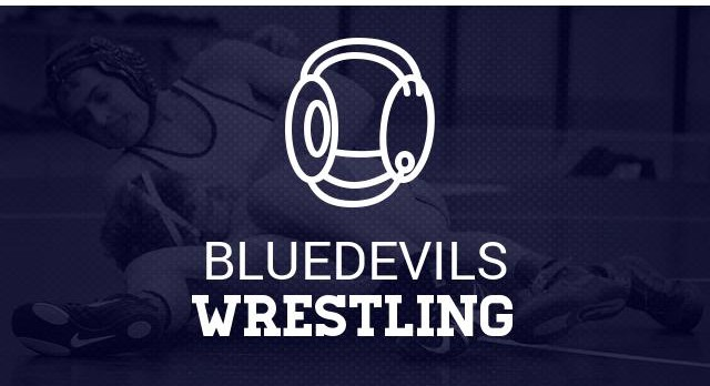 Baynon Advances in Wrestling State Playoffs