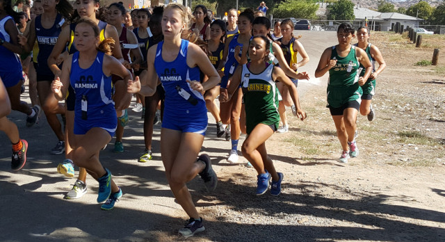 Bulldog Cross Country Results….Hard work pays off :)