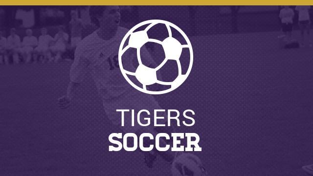 Holy Family High School Boys Varsity Soccer falls to Skyview High School 2-1
