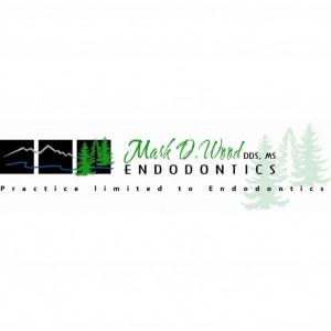Wood Block Logo for website