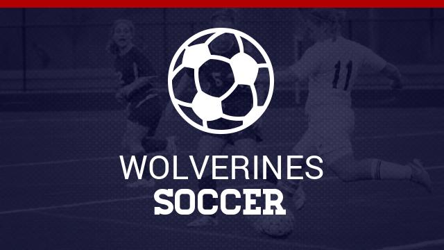 Wolverines fall to Liberty Common