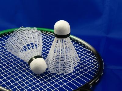 Badminton falls to Serra at home