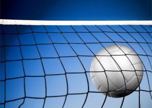 coachvolleyballnet+ball