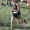 Tiger Cross Country at the Patriot Invitational