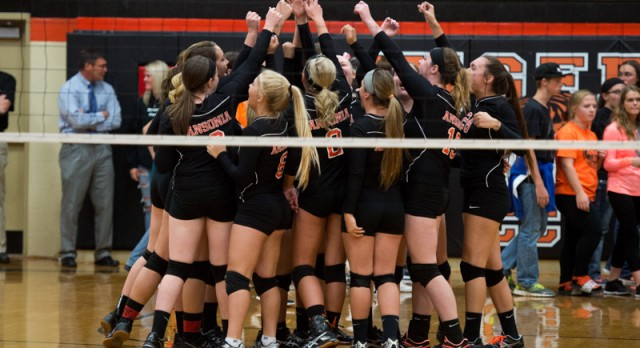 Tigers Fall in Sectional Volleyball Play