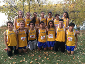 cross-country-state-qualifiers