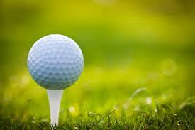 Addison High School Boys Varsity Golf finishes 4th place