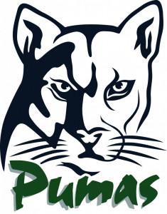 Puma Head Image