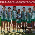 Cross Country CCS Champions!