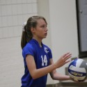 Tree of Life (Away) – MS Volleyball